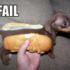 29290 - Unmoderated Gallery Of Funny Fail Pictures - 1