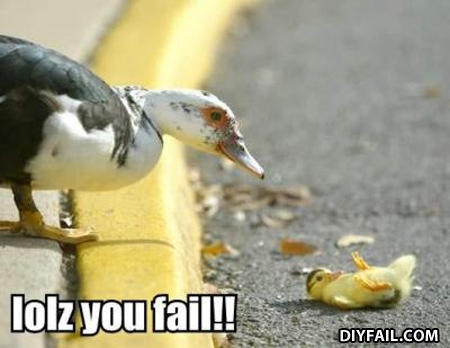 Duckfail
