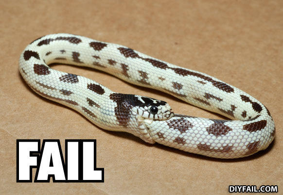 - Snakeception...