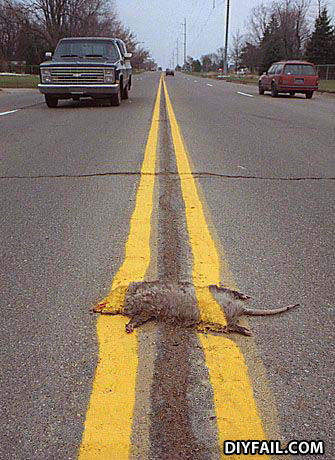 - i wanna see it when the road kill is gone, is that